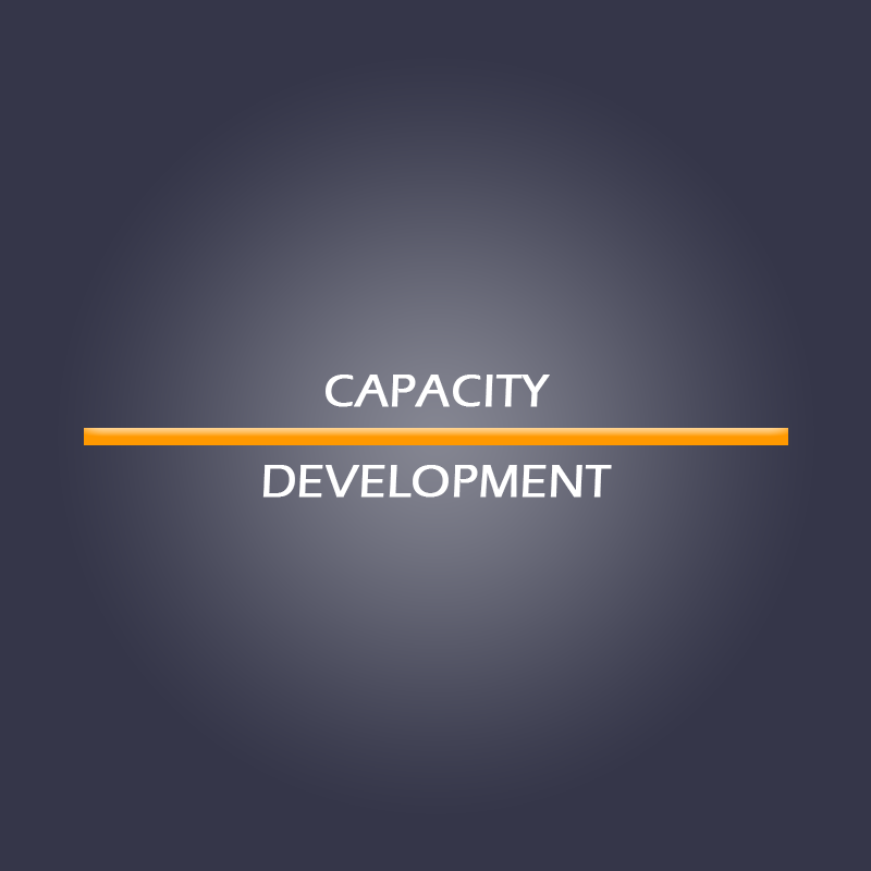 Capacity Development